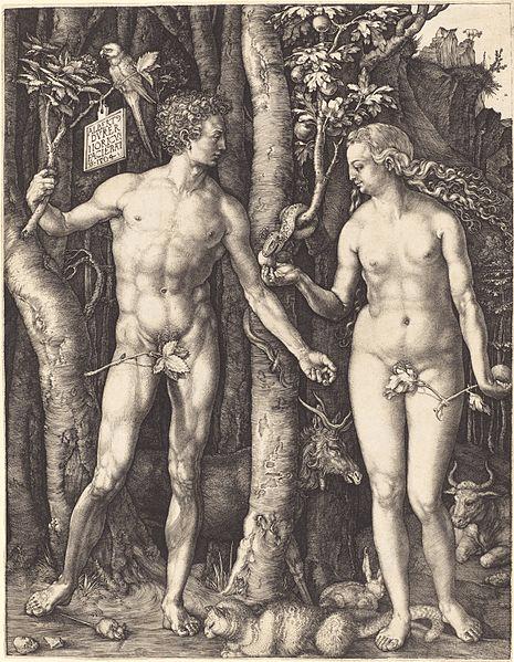 Albrecht Dürer, Adam and Eve, 1504.