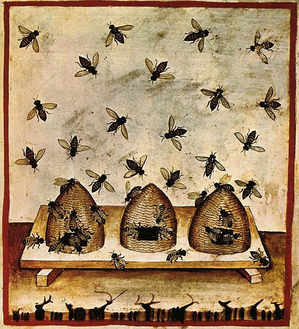 Tacuinum Sanitatis, The Honey and the Bees, 14th century.